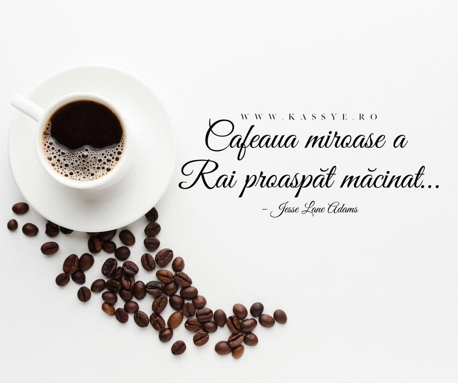 20 de citate despre cafea care te vor face să-ţi mai doreşti una